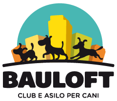 Bauloft Colletta